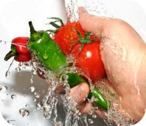 468116 Curso gratuito de Processamento de Alimentos Pronatec Uberl%C3%A2ndia 20112 Curso gratuito de processamento de alimentos, Pronatec Uberlândia 2012