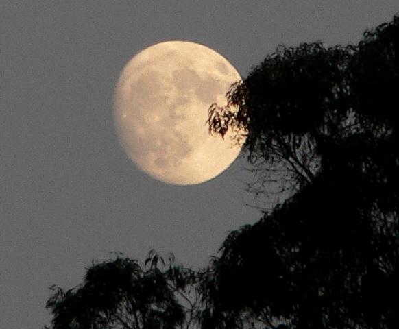 Mensagens Lua Cheia: IMAGENS BONITAS DA LUA
