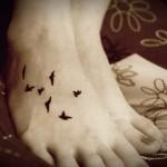 471868 Fotos de tatuagem de pássaro 06 150x150 Fotos de tatuagem de pássaro