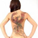471868 fotos de tatuagem de passaro 10 150x150 Fotos de tatuagem de pássaro