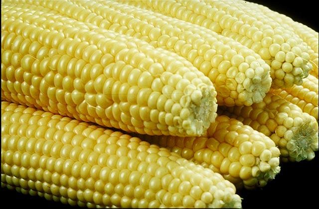 473586 panqueca milho 2 Panqueca de milho verde