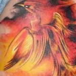 474204 Tatuagem de fênix fotos 12 150x150 Tatuagem de fênix: fotos