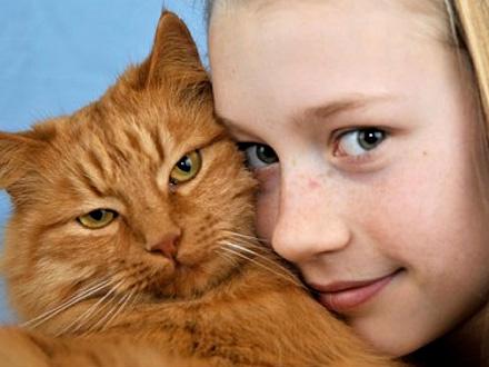 474768 gatos alergia Crise alérgica em crianças: cuidados, como evitar