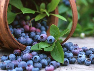 475499 frutas indicadas para diabeticos 4 Frutas indicadas para diabéticos