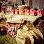 479046 Festa country dicas de decoração 9 150x150 Festa country: dicas de decoração, fotos