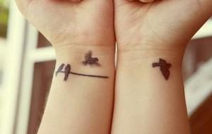 Tatuagem de andorinhas: fotos