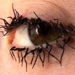 480651 Cílios postiços exóticos fotos 16 150x150 Cílios postiços exóticos: fotos