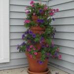480795 ideias criativas para decoração de jardins 3 300x234 150x150 Decorar jardins: ideias diferentes, fotos