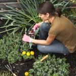 480795 jardim e1310575600856 150x150 Decorar jardins: ideias diferentes, fotos