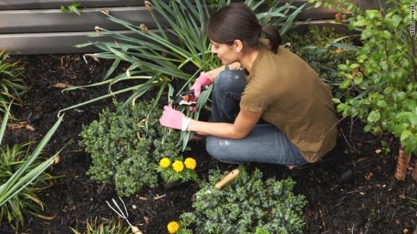 480795 jardim e1310575600856 Decorar jardins: ideias diferentes, fotos