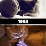 481499 Fotos engraçadas com gato para facebook 03 150x150 Fotos engraçadas com gato para Facebook