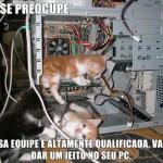 481499 Fotos engraçadas com gato para facebook 04 150x150 Fotos engraçadas com gato para Facebook