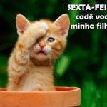 481499 Fotos engraçadas com gato para facebook 08 150x150 Fotos engraçadas com gato para Facebook