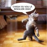 481499 Fotos engraçadas com gato para facebook 15 150x150 Fotos engraçadas com gato para Facebook