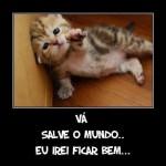 481499 Fotos engraçadas com gato para facebook 19 150x150 Fotos engraçadas com gato para Facebook