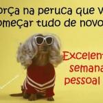 481502 Fotos engraçadas com cachorro para facebook 17 150x150 Fotos engraçadas com cachorros para Facebook