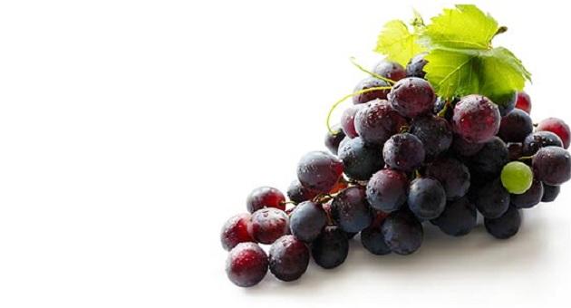 481807 uva 1 Suco de uva: Benefícios, Dicas