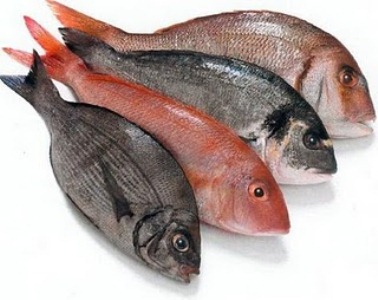 483047 Peixe Fresco 3 Alimentos que mais causam alergias
