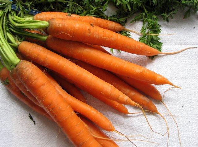 484586 betacaroteno 1 Betacaroteno: beneficios a saúde