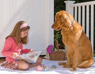 485420 Raças de cachorros que gostam de criança.1 Raças de cachorros que gostam de criança
