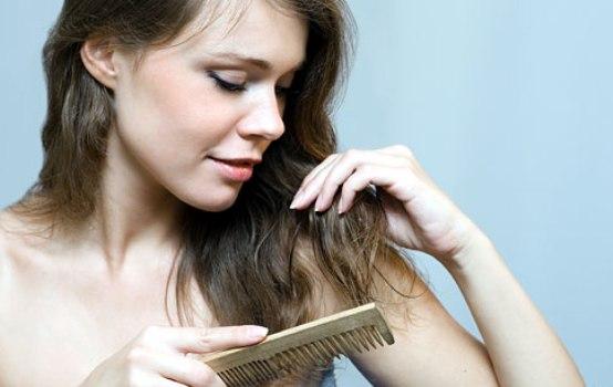 486851 Receitas contra queda de cabelos Receitas contra queda de cabelos