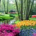 487628 Jardins floridos e bonitos 02 150x150 Jardins floridos e bonitos: fotos