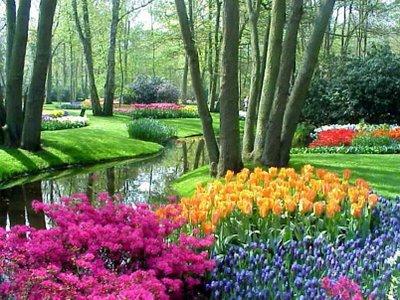 487628 Jardins floridos e bonitos 02 Jardins floridos e bonitos: fotos
