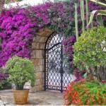 487628 Jardins floridos e bonitos 05 150x150 Jardins floridos e bonitos: fotos