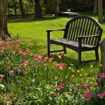 487628 Jardins floridos e bonitos 06 150x150 Jardins floridos e bonitos: fotos