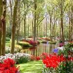487628 Jardins floridos e bonitos 10 150x150 Jardins floridos e bonitos: fotos