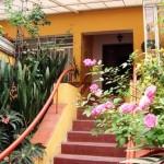 487628 Jardins floridos e bonitos 16 150x150 Jardins floridos e bonitos: fotos