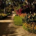 487628 Jardins floridos e bonitos 20 150x150 Jardins floridos e bonitos: fotos