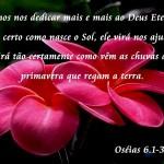 488754 Mensagens sobre amor de Deus para facebook 10 150x150 Mensagens sobre amor de Deus para facebook
