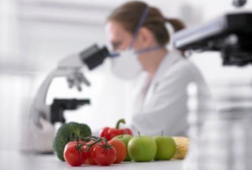 489191 Os microorganismo é uma realidade por isso é preciso ter cuidaods na hora de armazena os alimentos. Dicas para conservar os alimentos