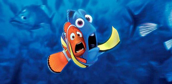 489611 Filme Procurando Nemo 2 2  Filme Procurando Nemo 2