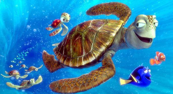 489611 Filme Procurando Nemo 2 3  Filme Procurando Nemo 2
