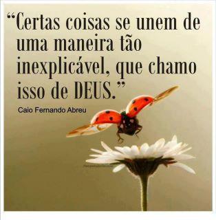489628 Mensagens de Caio Fernando Abreu para facebook 11 Mensagens de Caio Fernando Abreu para facebook