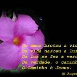 491039 Mensagens sobre Jesus para facebook 11 150x150 Mensagens sobre Jesus para Facebook