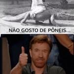 492130 Imagens sobre Chuck Norris para facebook 03 150x150 Imagens sobre Chuck Norris para facebook