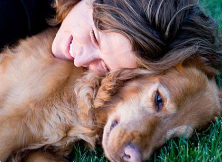 492187 alergias cães 1 Alergias em cães: sintomas, tratamento