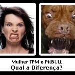 492805 Mensagens engraçadas sobre TPM para Facebook 20 150x150 Mensagens engraçadas sobre TPM para Facebook