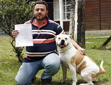 493513 Registro de Pedigree para cachorro %E2%80%93 como tirar documento1 Registro Pedigree para cachorro: Como tirar documento