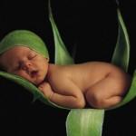 494417 Bebês dormindo fotos 15 150x150 Bebês dormindo: fotos