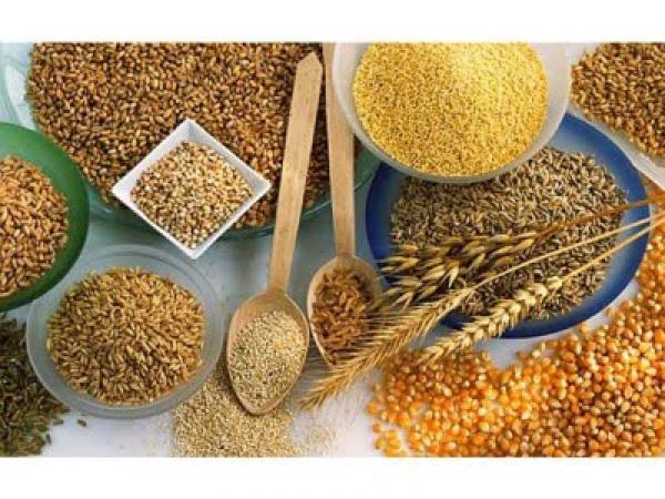 494712 Melhor cereal para emagrecer como escolher 02 Melhor cereal para emagrecer, como escolher