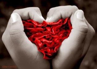 495919 Mensagens de Amor Para o Namorado dicas2 Mensagens de Amor Para o Namorado: dicas