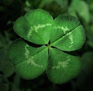 497536 Amuletos para dar sorte1 Amuletos para dar sorte