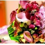 497911 Buquê de noiva dicas de flores fotos 05 150x150 Buquê de noiva, dicas de flores, fotos
