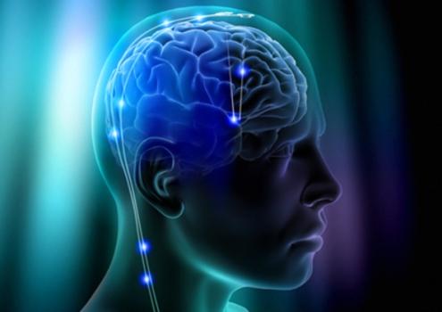 499819 Atividade cerebral pode indicar maior predisposição ao alcoolismo 1 Atividade cerebral pode indicar maior predisposição ao alcoolismo