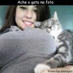 500046 fotos e montagens de gatos para facebook 10 150x150 Fotos e montagens de gatos para facebook