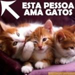 500046 fotos e montagens de gatos para facebook 20 150x150 Fotos e montagens de gatos para facebook